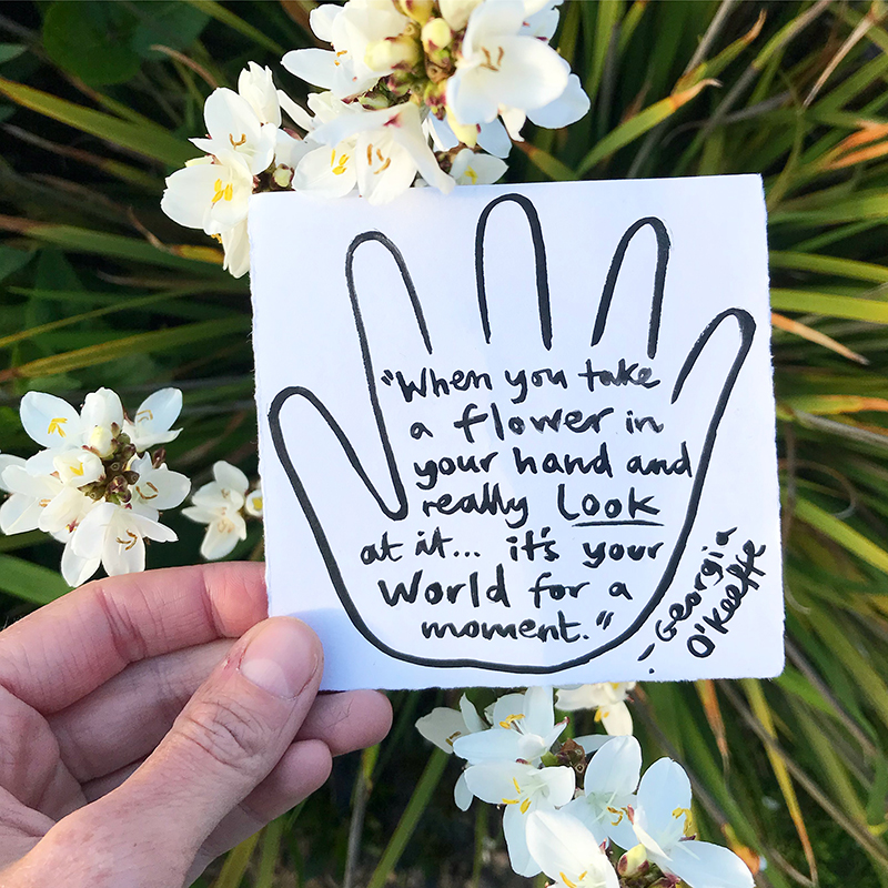 When You Take A Flower In Your Hand And Really Look At It… It's Your World For A Moment.